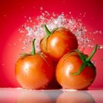 История происхождения томатов
