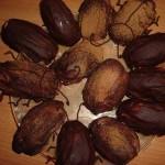 Сырок с арахисом, глазированный