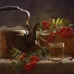 Чай рябиновый