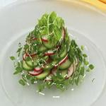 Зелёный салат с редисом и огурцами