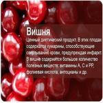 Воздействие ягод на организм человека