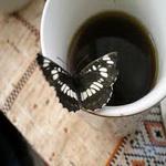Кофе из овсяного корня