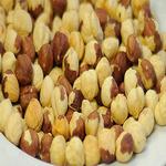 Фундук (ломбардийский орех)