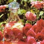Лосьоны из розы и шиповника