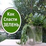 Освежить зелень